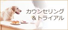 カウンセリング&トライアル|犬のしつけ等でお困りの方 出張ドッグトレーナーまでご相談下さい!京都・大阪・神戸