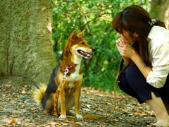 Dog's lakkuは飼い主様が気軽に相談できる存在でありたいと思います